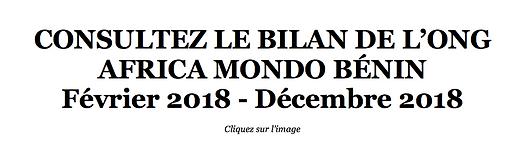bilan-africamondo-benin.png