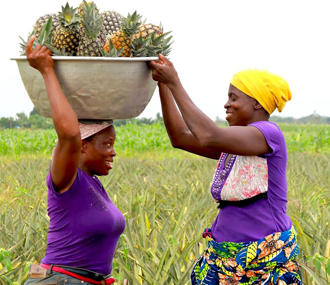 Agricultrice Benin MFC AFRICA MONDO