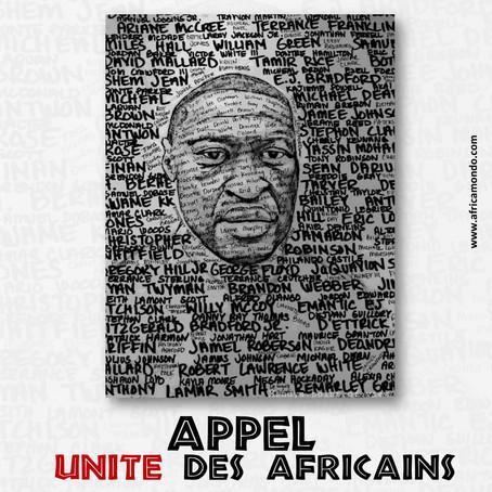 Africa Mondo lance un appel à un sursaut mondial des Noirs