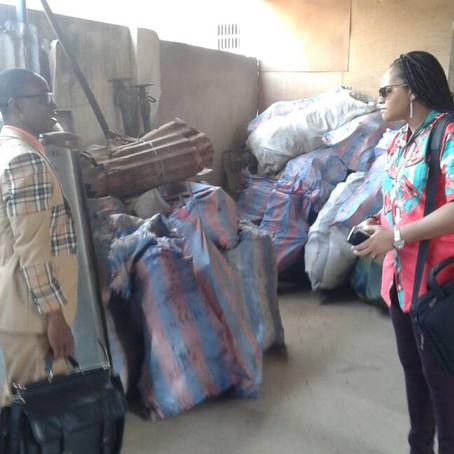 Bemah Gado, Entrepreneur dans le traitement des déchets