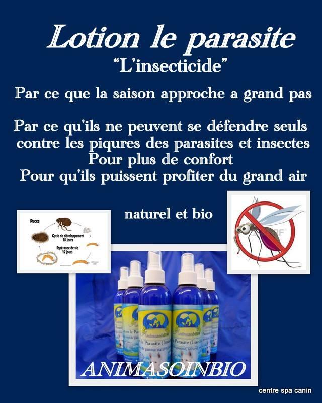 Lotion insecticide huile de neem.jpg