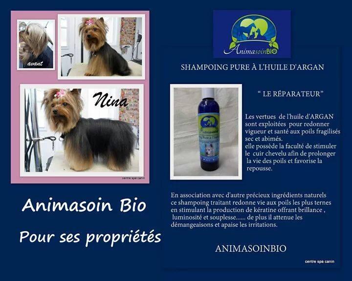Shampoing_doux_à_l'huile_d'argan.jpg