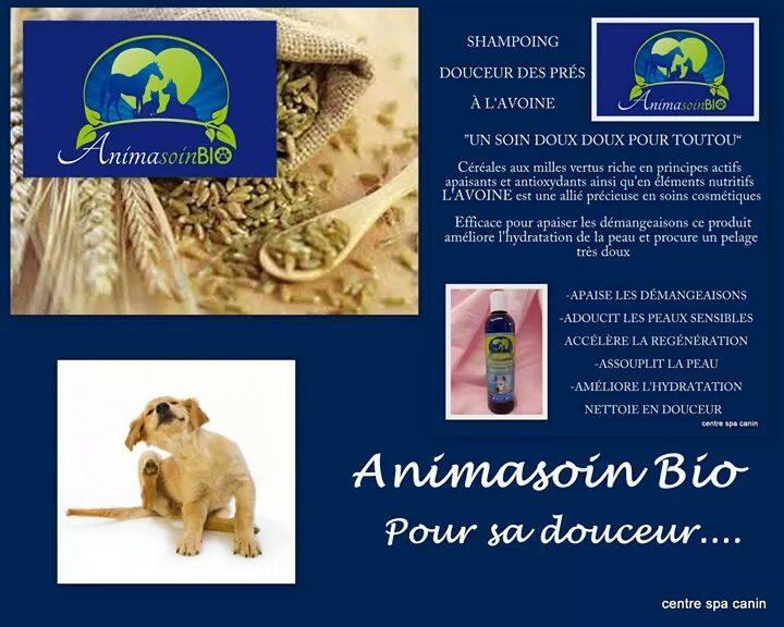 Sampoing_Douceur_des_prés.jpg