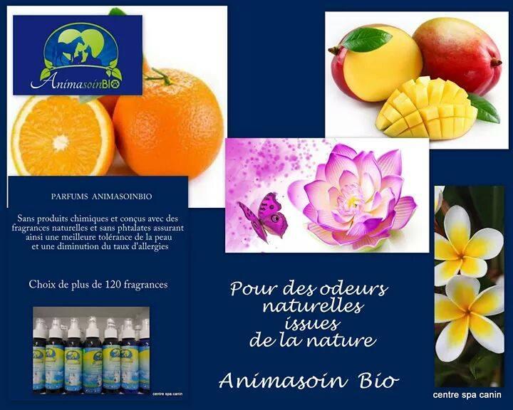 Parfums.jpg