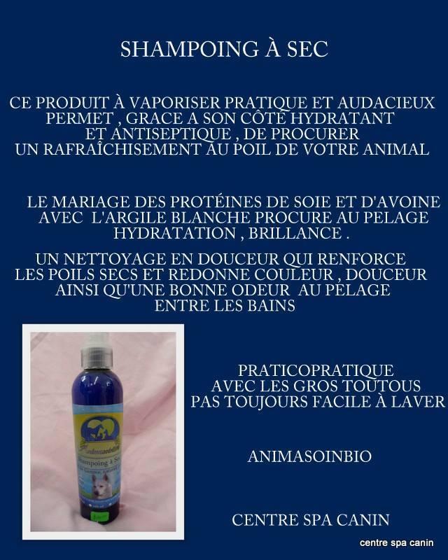 Shampoing_à_sec.jpg