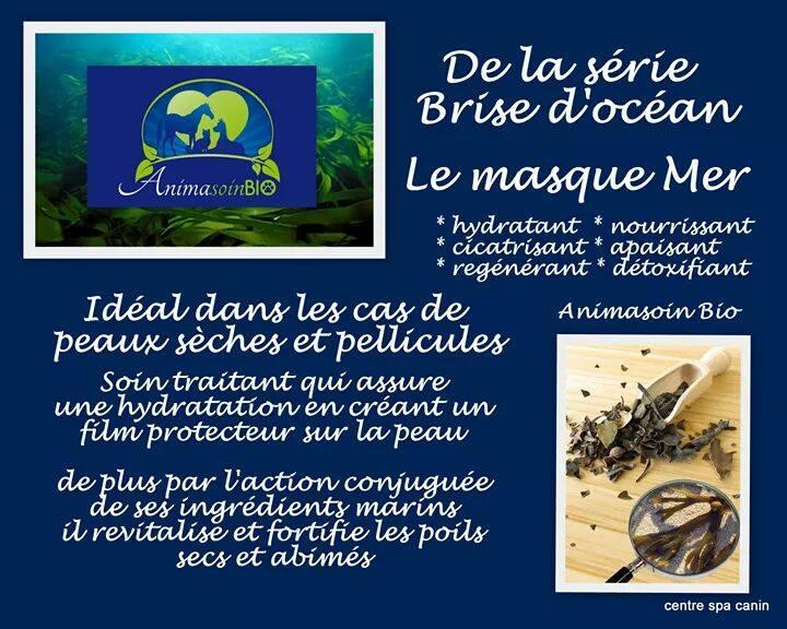 Masque_Brise_d'océan.jpg