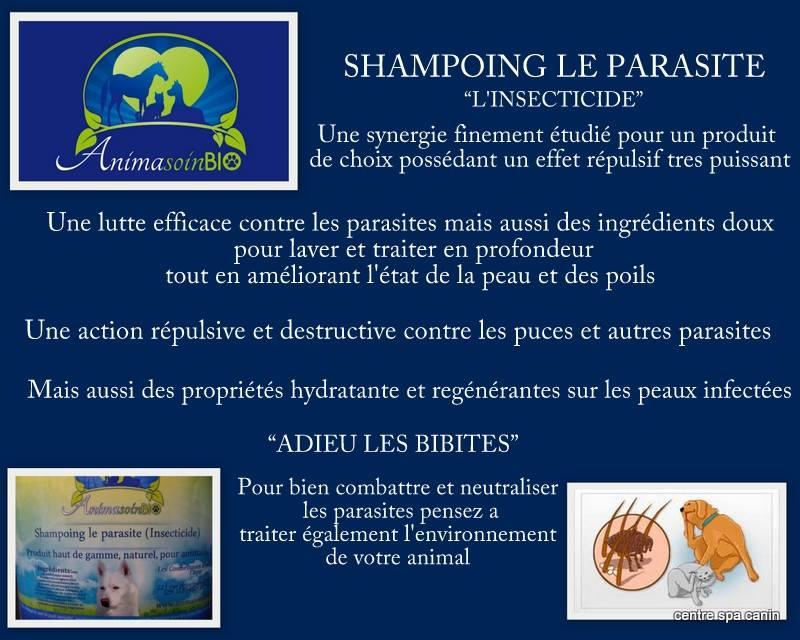 Shampoing Insecticide huile de neem.jpg