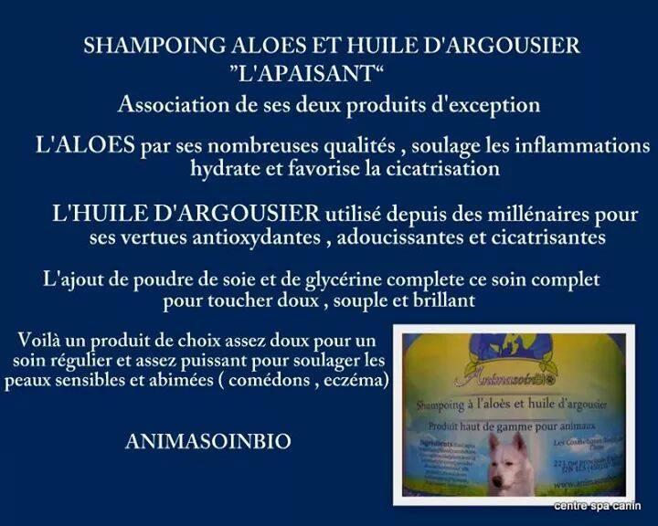 Shampoing_aloès_et_l'huile_d'argousier.jpg