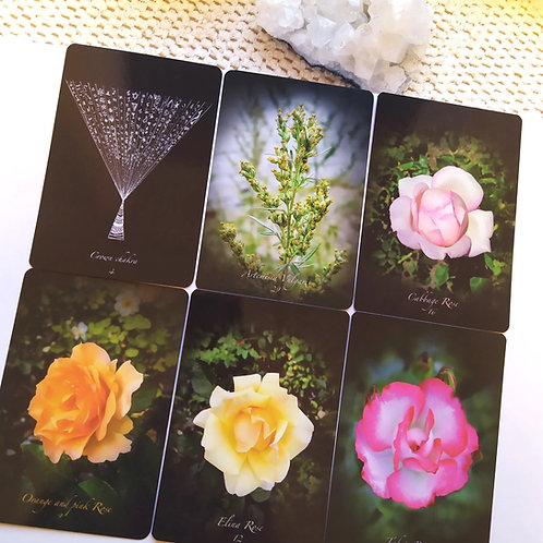 Oracle : Shamanic Healing with Roses and Flowers I  Roses et Fleurs