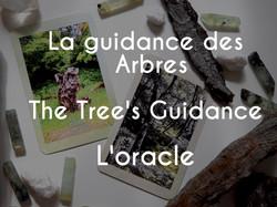 Guidance des arbres