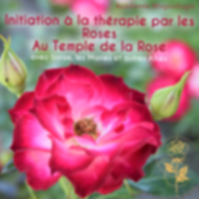 Formation_Roses_thérapies.png
