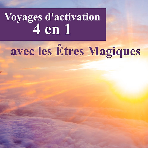 Voyages d'activation