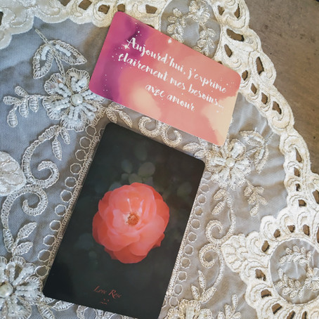 Rencontre avec Love Rose