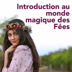 Photo_couverture_Introduction_aux_fées.j