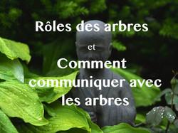 rôle_communiquer