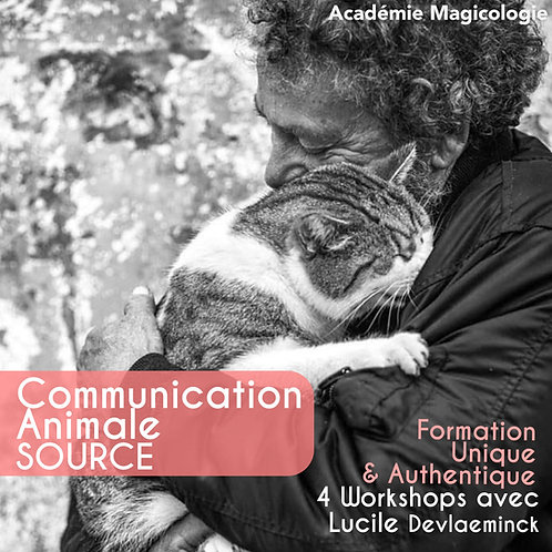 Communication Animale - 4 Workshops