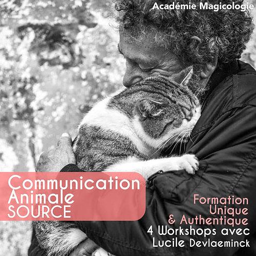Communication Animale - 4 Workshops