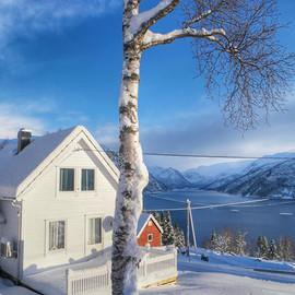 Hus i Haukedalen