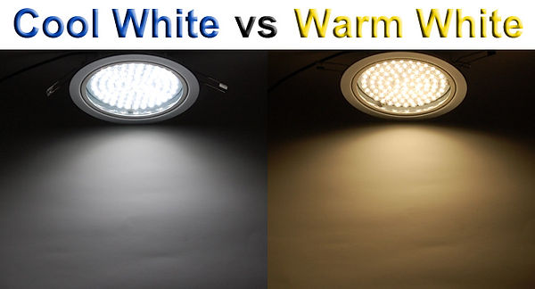 lighting scale3.jpg