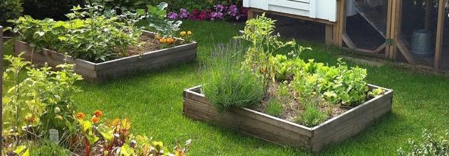 Farmhouse backyard gardens
