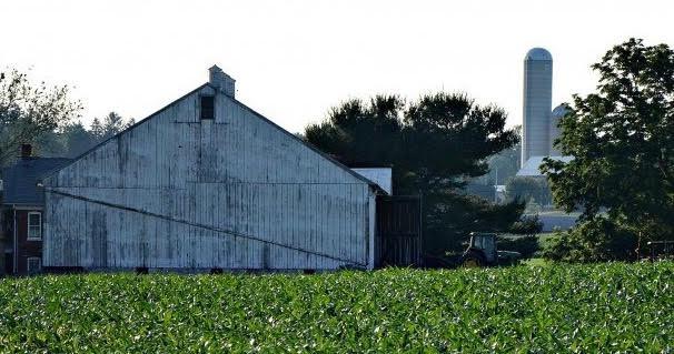 Farmhouse Design Trend