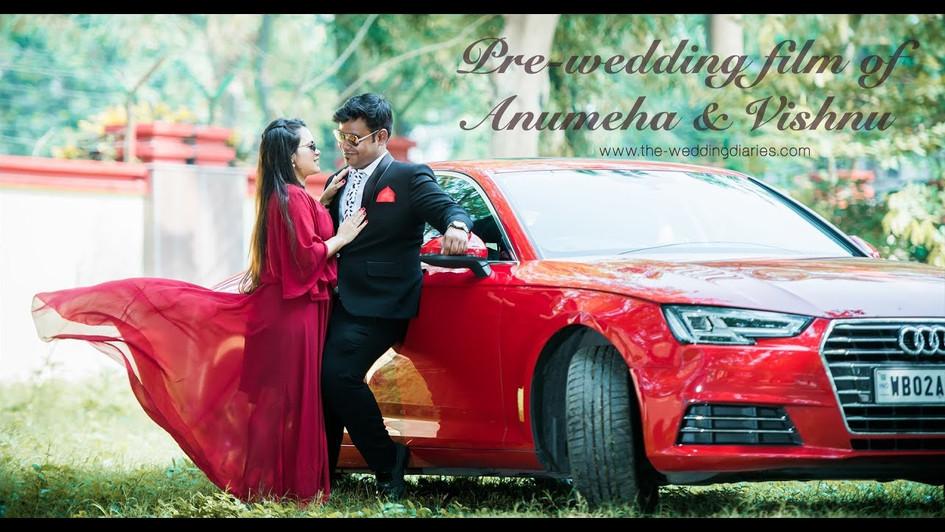 The Wedding Diaries - Anumeha + Vishnu Pre-wedding film 2018