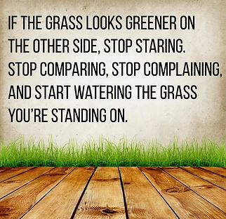 if-the-grass-looks-greener-on-the-other-