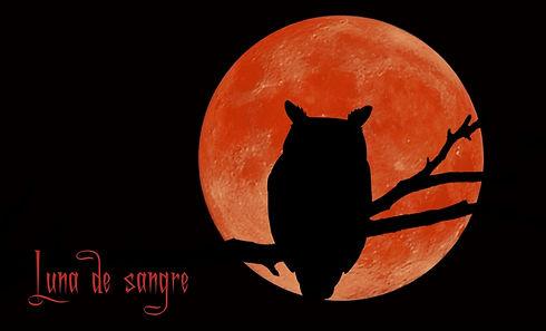 Foto luna de sangre.jpg
