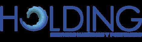 Logotipo Holding 30 11 .png