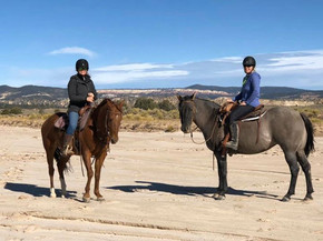 Pretty Ponies in the arroyo