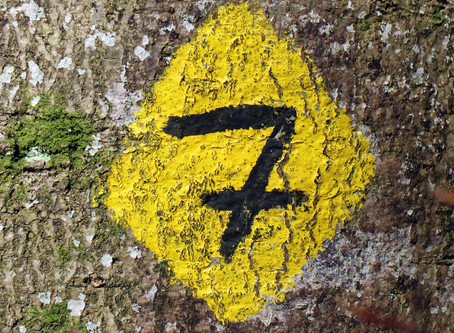 7 steps to get Quality right