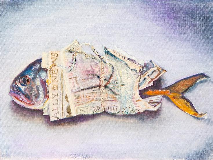 Fish Study - Fine Art Print