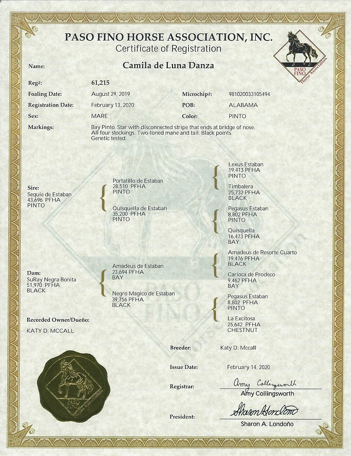 camila registration papers (2).jpg