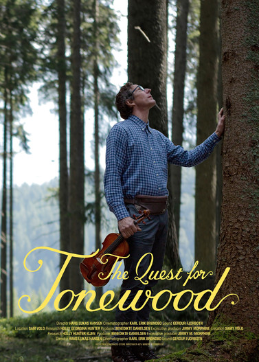 The Quest for Tonewood.jpg
