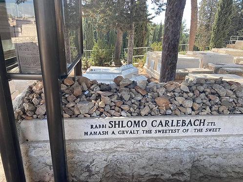 Rabbi Shlomo Carlebach