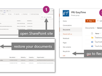 🍰 Restore or view previous versions of your document