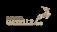 gazelle2019-logo_RGB_negativ-300x168.png