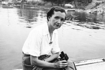 Rachel Carson and Accepting, Not Chasing