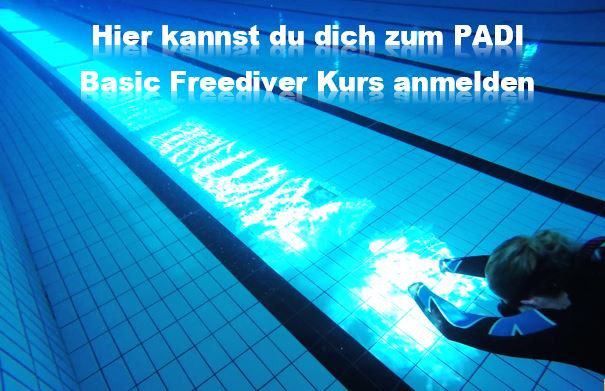 Melde dich hier zum Padi Free Diving, Freitauch- oder Apnoe-Tauchkurs an.