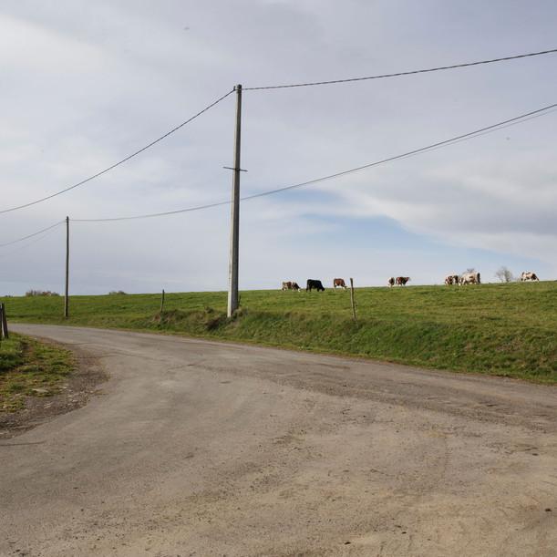 rural1601nb.jpg