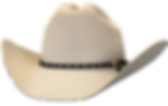 Yellowstone Repliica Hat