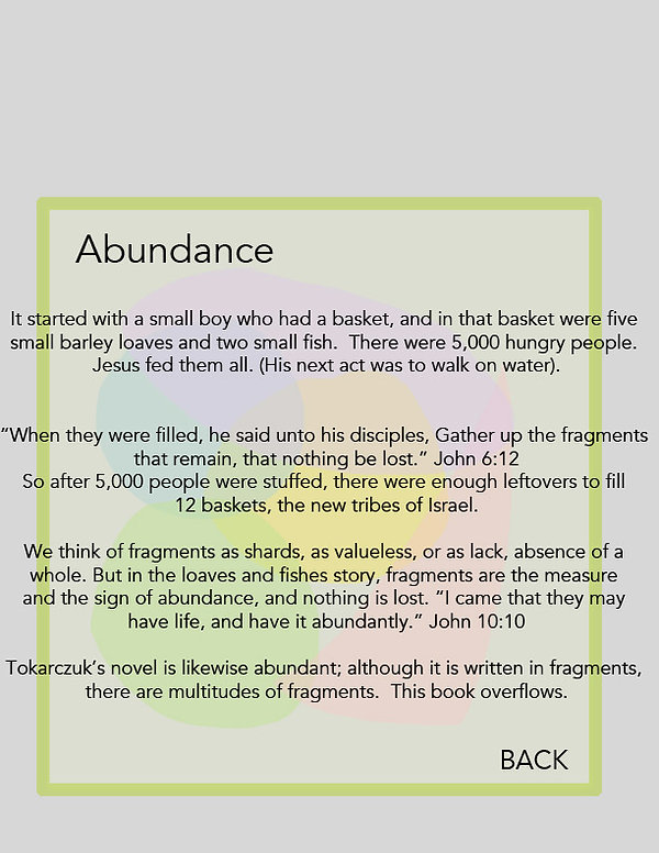 Fragments Abundance.jpg