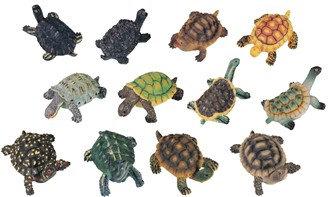 """2"""", Miniature Turtle, 12 PC Set"""