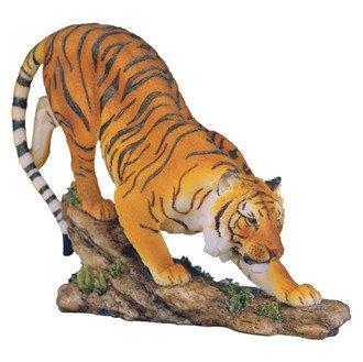 "6"", Bengal Tiger"