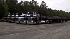 Trucking and Transportation