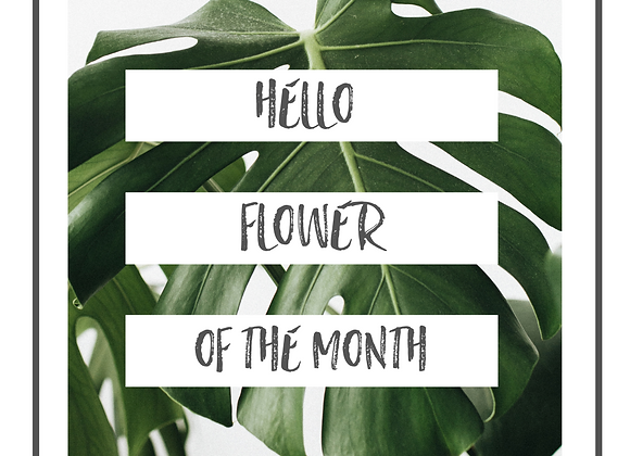 Flower of the Month July - Sweet Pea