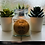 Thumbnail: 200ml Rustic Range Timmins Candles (30 fragrances)
