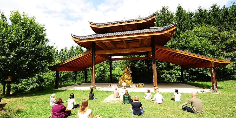 Bildungsurlaub Yoga im Kloster Buddhas Weg