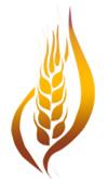 CCC logo pt2.png