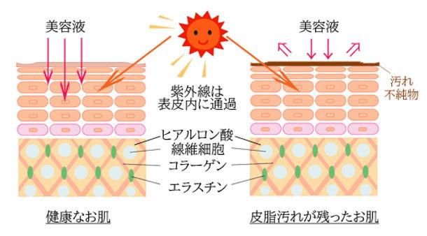 肌のコピー.jpg